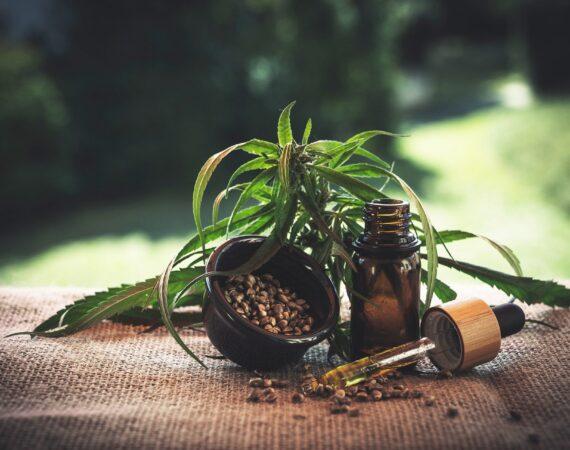 Produsele de canabis cu THC redus – la granița ilicitului penal